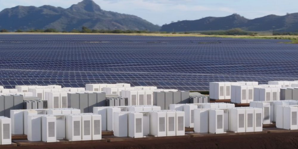 Land filled with Tesla solar panels
